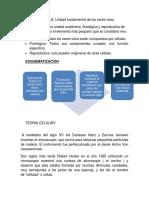 Guía Celula.docx
