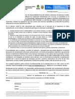 4. Consentimiento Profesionales APC ICBF PNUD 2019