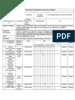 PROGRAMA ANUAL DE SEGURIDAD Y SALUD EN EL TRABAJO SECTOR AGROINDUSTRIAL