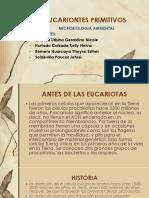 EUCARIONTES PRIMITIVOS.pptx