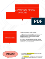 Organizational Design Options