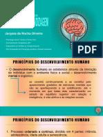 BASES NEUROBIOLÓGICAS DA APRENDIZAGEM PDF PSICOLOGA JOCYARA OLIVEIRA