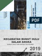 Kecamatan Bunut Hulu Dalam Angka 2019.docx