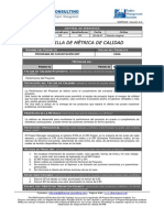 PLANTILLA DE MÉTRICA DE CALIDAD.pdf