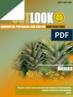 outlook nanas bps