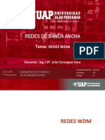 RBA Sem 12 - Redes WDM