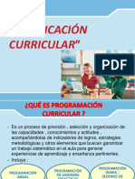 Programación Curricular.pptx