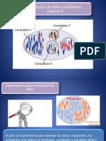 capitulo 9 metodología de la inv