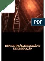 Mutação, Reparação e Recombinação