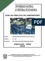 GUIA DE LABORAT. FLUIDOS II-.doc