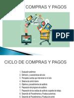 CAPITULO II CICLO DE COMPRAS Y PAGOS