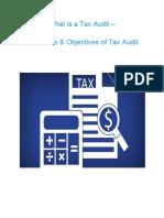 whatisataxauditprocedureobjectivesoftaxaudit-190319163005.pdf