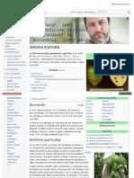 Graviola - Annona Muricata - Wikipedia, La Enciclopedia Libre