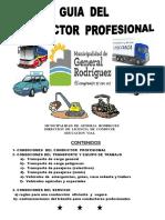 automotor_2016_guiadelconductor_profesional