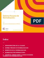 SISTEMA PERUANO DE NORMALIZACION (1)