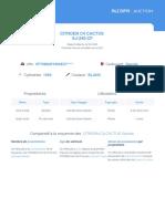 Rapport Autorigin - EJ240CF