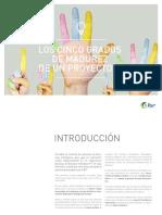 LOS CINCO GRADOS DE MADUREZ DE UN PROYECTO BI.pdf