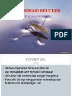 2. ORGANISASI SELULER -  Struktur dan fungsi-2017.pdf