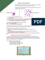 Diffusion and Osmosis Worksheet KEY 08