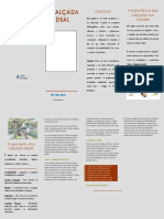 panfleto Calcada ideal_1.pdf