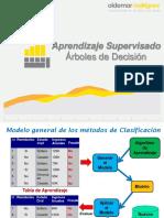 Presentación_-_Arboles_de_Decisión.234135906.pdf