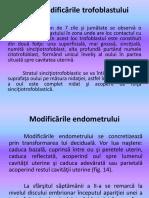6. Trofoblastul si embrioblastul.Embrionul bilaminar