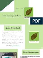 Dry Leaf Composting Guide.pptx