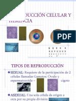 ob_dba116_reproduccion-celular-y-herenciaa.ppt