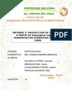 INFORME GRUPO 1(CELULASA)