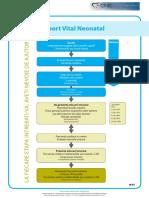 ERC Poster_7_NLS_01_01_ROM_V20110127.pdf