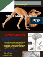 aula 1 generalidades.ppt