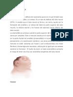 EMBRIOLOGIA DEFECTOS CONGENITOS (2)
