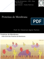 04 - Proteínas de Membrana.pdf