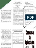 CONOZCA LA IDD.doc
