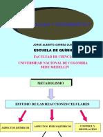 1. Introduc. al Metabolismo y a la Bioenergética.ppt