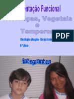 alimentosfuncionais-hortalias-111118124819-phpapp02