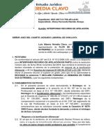 APELACIÓN - FLOR DE MARIA - UGEL LAMBAYEQUE.docx
