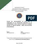 tesis fraccionamiento.pdf