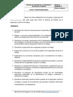 Roles y resonsabilidades.docx