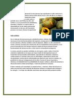 alimentos autoctonos.docx
