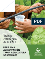 Trabajo estratégico de la FAO PARA UNA ALIMENTACIÓN Y UNA AGRICULTURA SOSTENIBLES