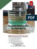 Pruebas físicas y químicas en minerales (Reporte)