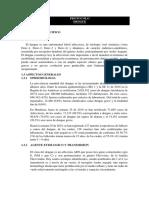 Protocolo dengue erika.docx
