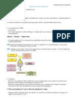 Sistema nervoso autônomo .pdf