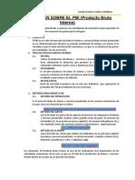 Sanoval Estefany_Informe de PBI