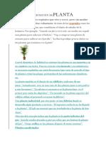 DEFINICIÓN DEPLANTA.docx
