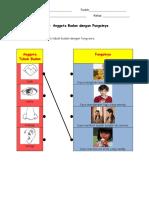 75242835-Padankan-Anggota-Tubuh-Badan-Dengan-Fungsinya.pdf