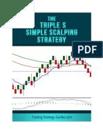 Triple S Strategy.pdf