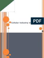 cellularindustryinindia-091005095938-phpapp01