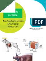4. Fisiología cardiaca